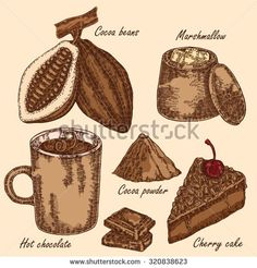 stock-photo-hand-drawn-cocoa-beans-cocoa-pod-chocolate-cake-marshmallow-hot-chocolate-in-sketch-style-320838623.jpg (450×470)