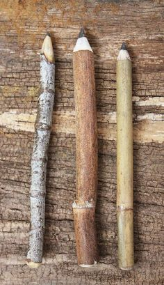 twig pencils / assorted set