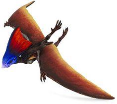 8 Ideas De Reptiles Voladores En Tododinosaurios Volador Reptiles Dinosaurios Nombres franceses para tu bebé. reptiles voladores en tododinosaurios