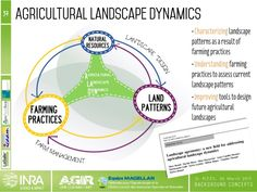 Background concepts of landscape and territory agronomy