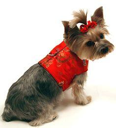31 Best Cute Dog Harness Dress Vest Coat Images Vest Coat Cute