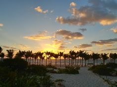 HOTEL RIU DUNAMAR (Playa Mujeres, Meksyk) - opinie o ośrodek wypoczynkowy (all-inclusive) oraz porównanie cen - Tripadvisor Trip Advisor, Celestial, Sunset, Outdoor, Playa Del Carmen, Sunsets, Outdoors, Outdoor Living, Garden