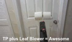 Toilet Paper + Leaf Blower = Awesome