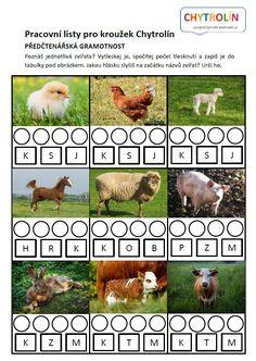 Pro předškoláky: Pojmenujte zvířata na obrázcích. Jak se jmenují mláďata? Jak se jmenují rodiče mláďat? Vytleskej jméno zvířete a počet slabik zapiš do tabulky. Zároveň urči počáteční hlásku a vyber tu správnou z nabídky. Baby Time, Montessori, Logos, Animals, Animales, Animaux, Logo, Animal, Animais