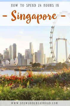 The Perfect Itinerary for Spending 1 Day in Singapore Singapore Travel Tips, Singapore Itinerary, Singapore Singapore, Amazing Destinations, Travel Destinations, Holiday Destinations, Asia Travel, Croatia Travel, Hawaii Travel