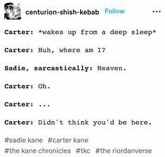 Percy Jackson Characters, Percy Jackson Memes, Percy Jackson Books, Percy Jackson Fandom, Magnus Chase, Kane Chronicals, Sadie Kane, Chase Carter, Red Pyramid