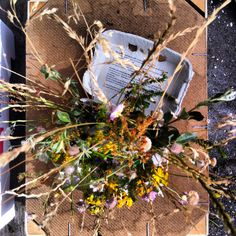 Summergarden, herbs and flowers from the beach..