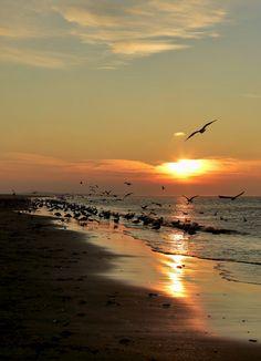 Sunset, Ameland, Netherlands