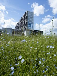 Schiecentrale 4b office bldg in Rotterdam by Mei Architecten