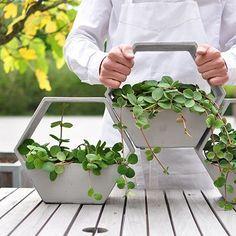 50 Unique Pots & Planters You Can Buy Right Now Cement Flower Pots, Concrete Pots, Concrete Planters, Wall Planters, Succulent Planters, Succulents Garden, Flower Vases, Cement Art, Concrete Crafts