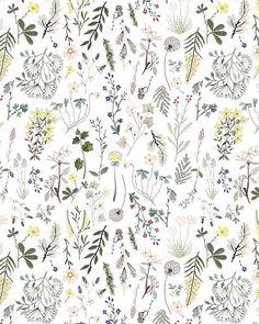 Is this wallpaper? Boho Pattern, Flower Pattern Design, Design Floral, Surface Pattern Design, Pattern Art, Flower Patterns, Pattern Ideas, Illustration Blume, Illustration Botanique