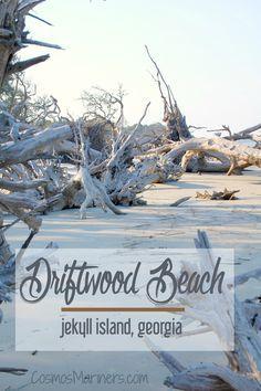 A Hauntingly Beautiful Spot at the Edge of the World: Driftwood Beach, Jekyll Island, Georgia   CosmosMariners.com