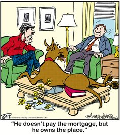 Marmaduke. For more cool memes, cool stuff, and utter nonsense visit http://www.pinterest.com/SuburbanFandom/memes-and-such-nonsense/