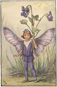 """ Dog-Violet Fairy, Cicely Mary Barker "" February's birthday flower."