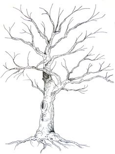 Guestbook Tree - Anne Herbst
