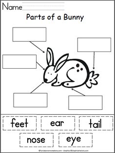 Students cut and paste the matching labels for the parts of a bunny. Good springtime or Easter activity.