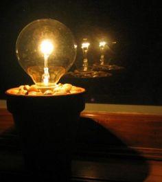 Light bulb pot plant