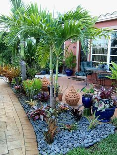If you are working with the best backyard pool landscaping ideas there are lot of choices. You need to look into your budget for backyard landscaping ideas Tropical Backyard Landscaping, Florida Landscaping, Florida Gardening, Landscaping With Rocks, Front Yard Landscaping, Backyard Patio, Landscaping Ideas, Succulent Landscaping, Patio Ideas