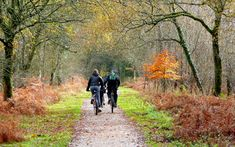 #NewYear, new you? Enjoy our 4 super #cycling routes around #NorthDevon during your stay.