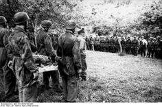 Fallschirmjäger, France 1944