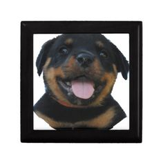 #rotweiler puppy jewelry box - #rottweiler #puppy #rottweilers #dog #dogs #pet #pets #cute
