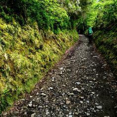 Tramos del Camino de Santiago
