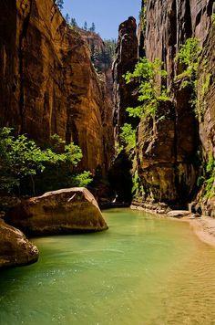 The Narrows. Zion National Park, Arizona