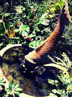 Fonte em Jardins