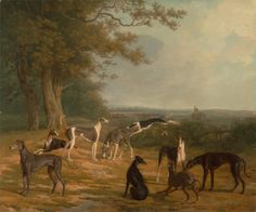 Nine Greyhounds in a Landscape. Agasse, Jacques-Laurent, ca. 1807. Yale Center for British Art, New Haven.