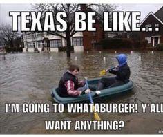 4dbf0c62edf3f14e1380c448d16d3539 texas flood texas humor meanwhile in texas spring of 2015 true texan pinterest