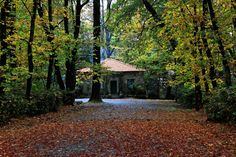 House in the woods. by Miguel Silva on 500px