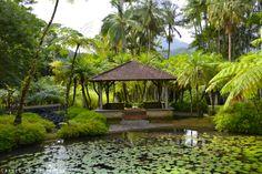 Martinique - Jardin de Balata : carbet Headed to this lush botanical garden soon!