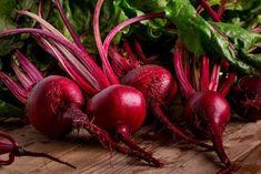 Beetroot: Beets Health Benefits and Nutrition Facts Sugar Cane Plant, Home Remedies, Natural Remedies, Beet Plant, Natural Multivitamin, Turmeric Drink, Red Beets, Natural Antibiotics, Natural Treatments