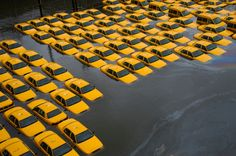 Yellow Cabs in the Wake of Hurricane Sandy
