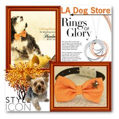 """""""LA Dog Store"""" by ladogstores ❤ liked on Polyvore featuring Tiffany & Co."""