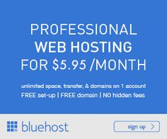 Web Hosting Professionale