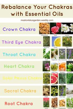 Aromatherapy is the easy practice of awakening your senses with natural oils. In reality, you have actually most likely experienced the benefits of Aromatherapy without even understanding it! Essential Oils For Chakras, Essential Oils Guide, Essential Oils For Colds, Essential Oil Uses, Young Living Essential Oils, Essential Oil Diffuser, Giving Up Smoking, Oil Pulling, Aromatherapy Oils