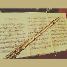 Wanna be a professional musician? Good. Practice everyday and everynight when it's holiday Chistmats new year and it's will be fine. (I don't feel my fingeeers >.<) #musician #classicalmusician #classicalmusic #music #practice #sudy #flute #flutist #sheetmusic #professionalmusician #professional #tried #sleepy #dontgiveup by norakakasi