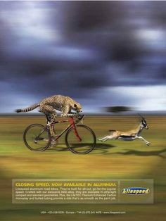 es un jaguar persiguendo a una gacela pero la personificación esta en q el jaguar la pesigue montado en una bici como una persona