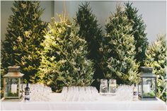 Never-Before-Seen Winter Wedding Ideas – Weddingbells