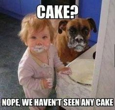 25 Adorable Photos That Prove Why Babies Need Pets Hunde und Kinder sind so wertvoll und oft lustig! Funny Babies, Funny Dogs, Cute Babies, Funny Toddler, Funny Boxer, Toddler Humor, Funny Puppies, Silly Dogs, Funny Girls