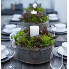 Patio with Modern Farmhouse Centerpiece - Galvanized tubs with baby lettu., Rustic Patio with Modern Farmhouse Centerpiece - Galvanized tubs with baby lettu., Rustic Patio with Modern Farmhouse Centerpiece - Galvanized tubs with baby lettu. Vegetable Garden For Beginners, Gardening For Beginners, Vegetable Gardening, Design Floral, Deco Floral, Decoration Christmas, Decoration Table, Rustic Christmas, Christmas Wedding
