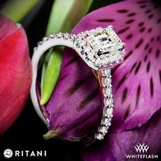 This dazzling Ritani Emerald French-Set Halo Diamond Band Engagement Ring is part of the Bella Vita Collection and is a classic. It holds a sparkling row of French-Set diamonds that add radiance to the band and encompasses a diamond halo to highlight and magnify your choice of center diamond.