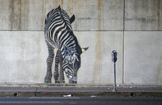 "Zebra Grazes on Garbage, photo by Thomas Hawk, 2005 - ""Animurals"", 1985, oils on concrete, 17' x 180'. Six zebras painted beneath the 580 freeway on Broadway in Oakland, CA. Commissioned by the Oakland Office of Community Development and numerous community donations. By Dan Fontes"