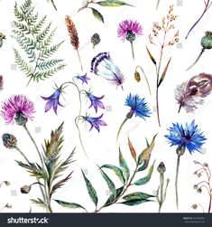 8eaa29e0e Related image Feather Sketch, Wildflower Tattoo, Wildflower Drawing,  Thistle Tattoo, Realistic Drawings