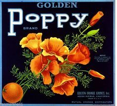 Azusa Los Angeles Golden Poppy Flowers Orange Citrus Fruit Crate Label Art Print #GoldenPoppy #CrateLabelArtPrint