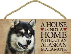 SJT30102 A house is not a home without an Alaskan Malamute wood sign plaque 5 x 10 >>> Want additional info? Click on the image.