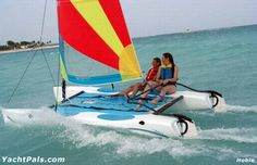 catamaran sailing pics - Google Search