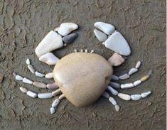 Steentjes krab