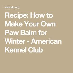 Recipe: How to Make Your Own Paw Balm for Winter - American Kennel Club Pet Spa, Make Your Own, Make It Yourself, Pet Treats, Dog Recipes, Dog Paws, Happy Dogs, Dog Grooming, Dog Gifts